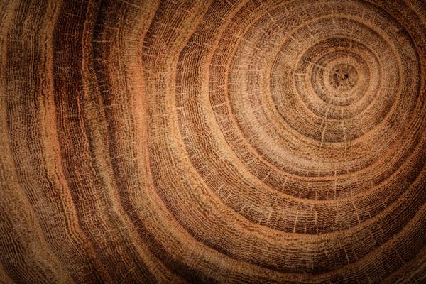 Неповторимость текстуры от природы