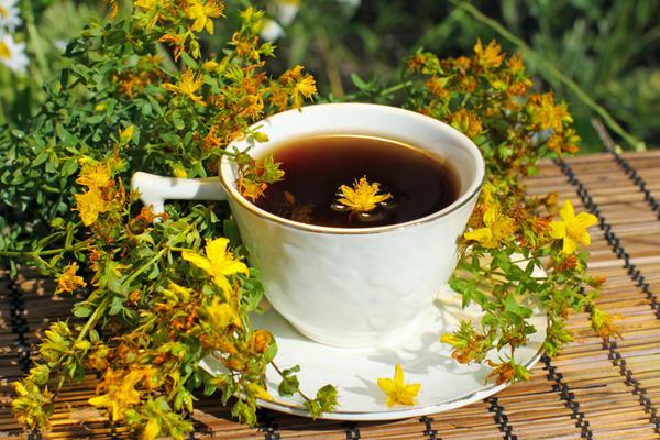 Чаем из зверобоя не следует злоупотреблять