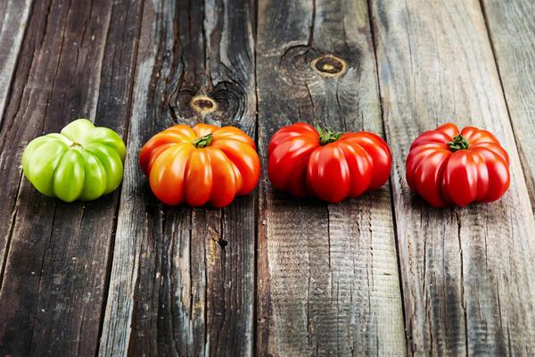 Если вы вынуждены снять помидор раньше, то тогда необходимо дозаривать его в помещении
