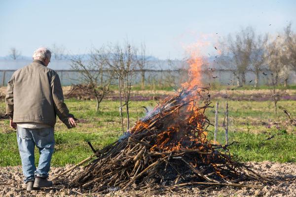 Многие считают, что сжигать мусор проще всего