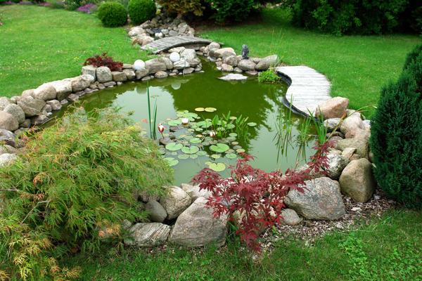 Водоем стал непременным атрибутом садового дизайна