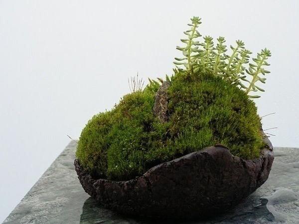 Кусамоно. Фото с сайта picartan.com