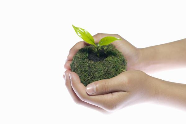 Освободим растения от горшков!