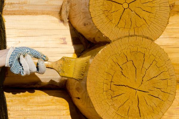 Деревянные постройки требуют защиты