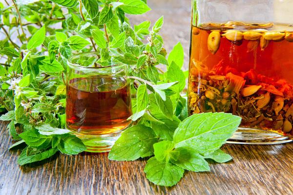 Облагородить традиционный напиток можно практически любой растущей в саду зеленью