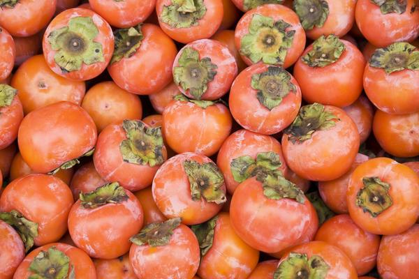 При необходимости плоды хурмы можно заморозить