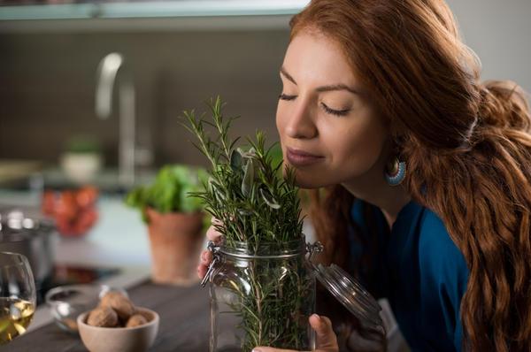 Человек живет среди запахов: все в этом мире имеет свой собственный аромат