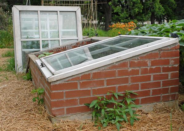 Парник - малогабаритное сооружение для рассады и ранних овощей
