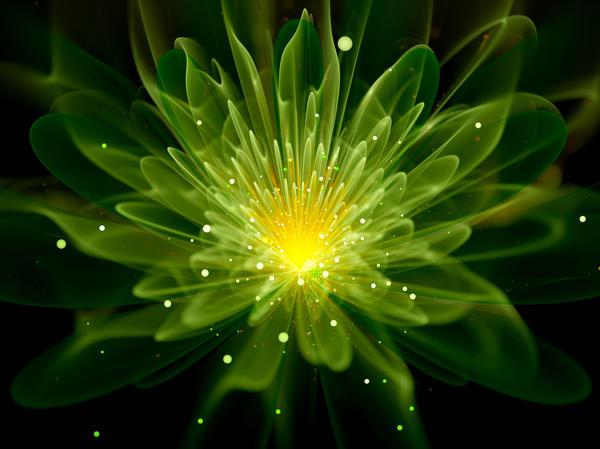 Учёные пытаются создать светящиеся растения