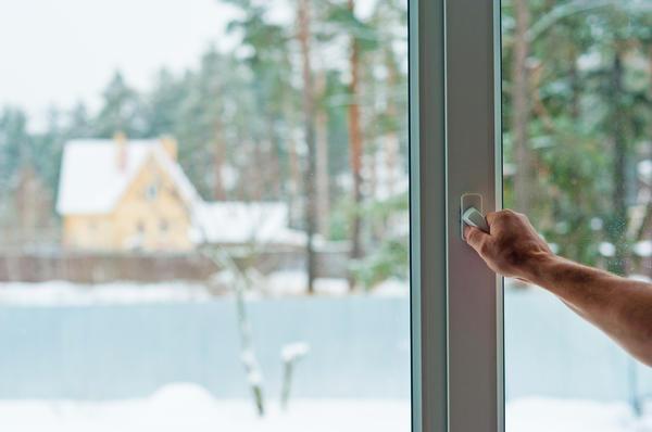 В человеческом жилище всегда есть окна