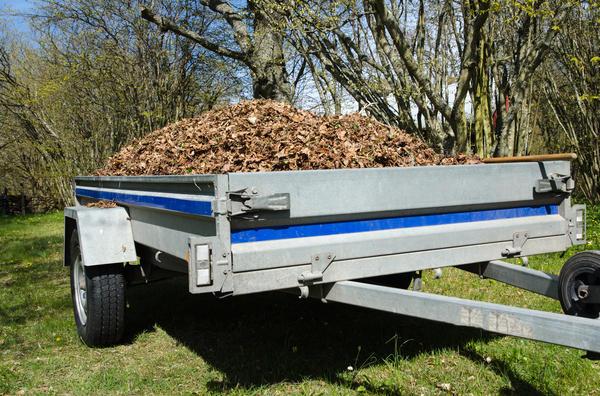Очистить пограничную с лесом полосу и вывезти мусор - обязанность хозяина пограничного с лесом участка