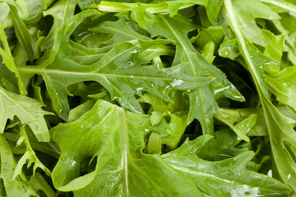 Мизуна - японская капуста. Листья мизуны очень вкусны и полезны