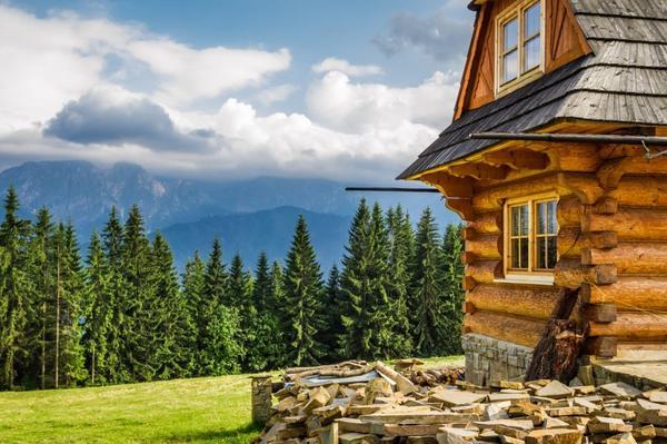 В России дерево не является самым популярным материалом для строительства