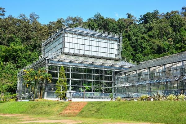 Оранжерея в Ботаническом саду королевы Сирикит, г. Чиангмай, Таиланд