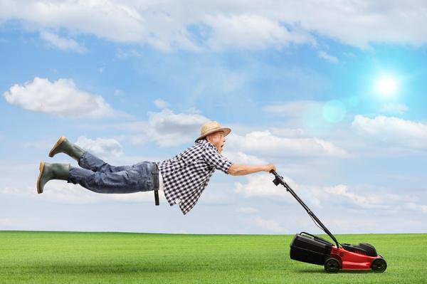 Если не хотите толкать газонокосилку, обратите внимание на самоходные модели