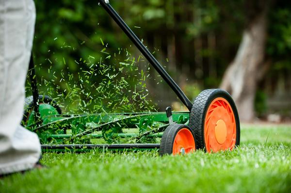 Барабанные газонокосилки могут срезать траву ниже, чем роторные