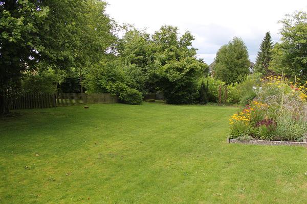 Всем хочется иметь красивый, ухоженный сад, а не кучу хаотично растущей зелени