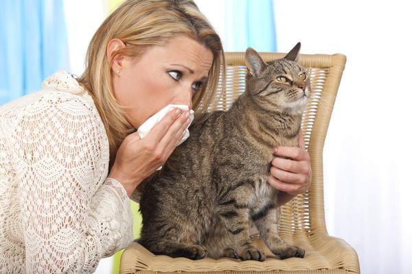 Если известен аллерген, необходимо прервать контакт с ним