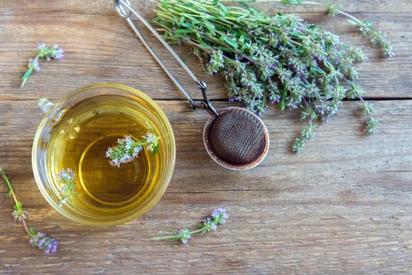 Тимьян полезен в борьбе с аллергией