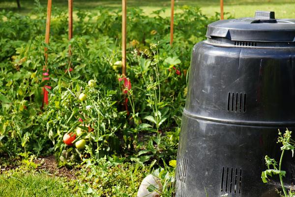Из ботвы томатов можно приготовить отличный компост