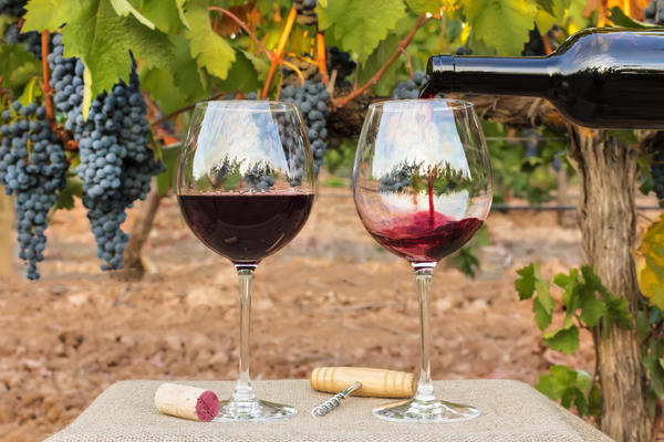 Немного красного вина принесет только пользу