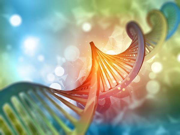 План развития растения заложен в его генетическом коде