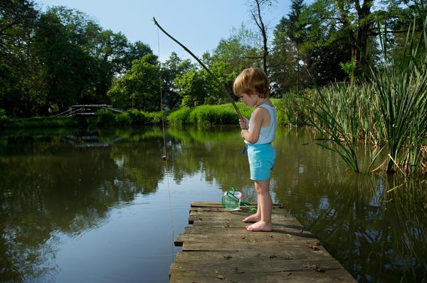 Не во всяком водоеме рыба безопасна для здоровья