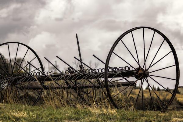 Конные грабли для сгребания сена