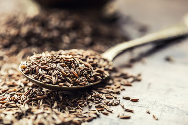 Лекарственным сырьем у тмина служат семена