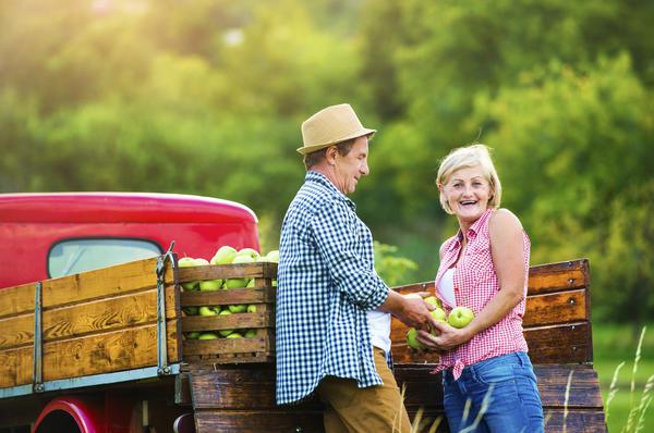 Для земледельца сбор урожая - повод задуматься о новом сезоне