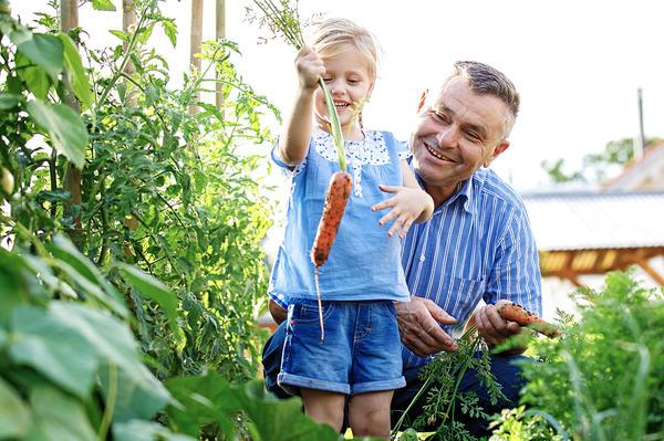 Если вы Морковины - спешите за скидкой по акции Садовая фамилия