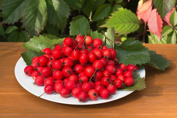 Плоды боярышника