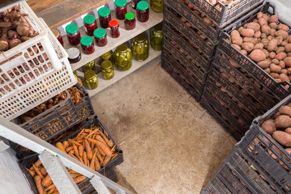 Далеко не у всех есть оборудованные хранилища для урожая овощей
