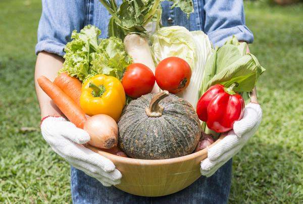 В плодах достаточно белка для нашего рациона