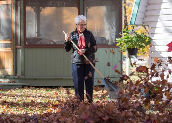 Уборка палой листвы - обязательная ежегодная повинность владельцев садовых участков