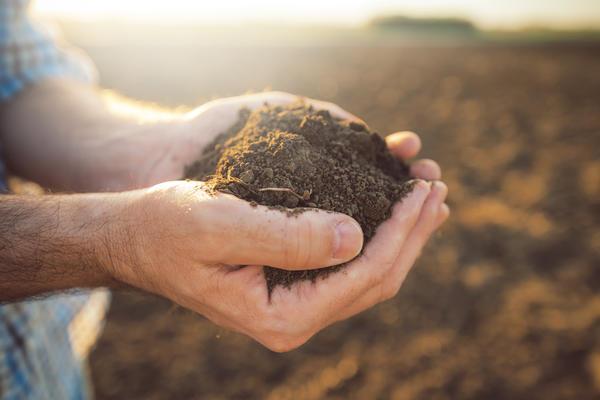 План изменений земельного законодательства до 2020 г