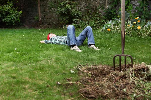 Как упростить уход за садом и огородом