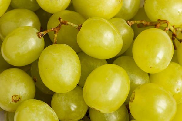 Уникальный состав действующих веществ и витаминов придает неповторимый вкус и аромат, присущий известным сортам винограда