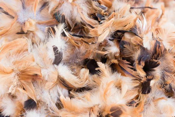 Почву можно утеплить перьями