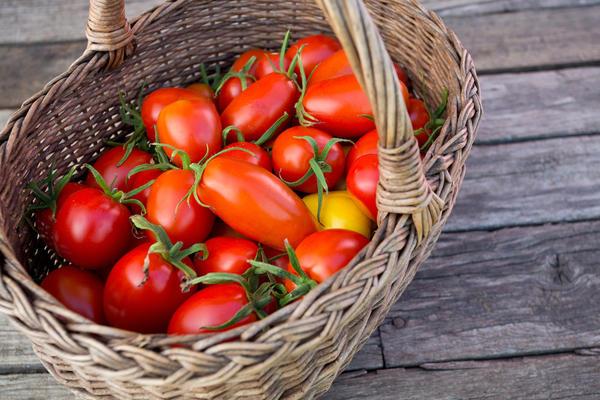 Урожай грунтовых томатов станет отличным осенним подспорьем