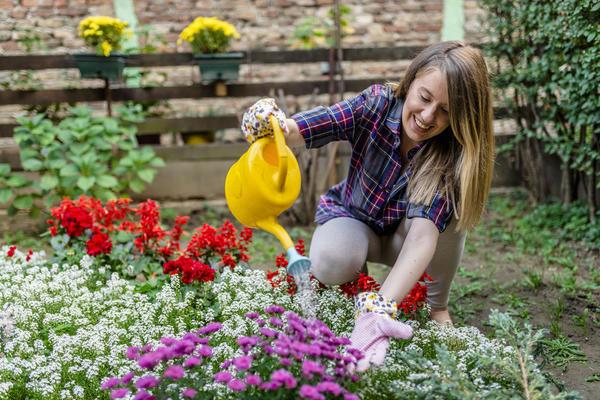 Озеленение дворов - задача для неравнодушных горожан