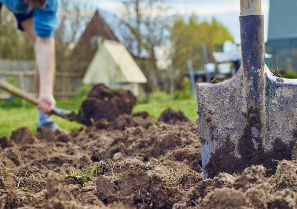 Лопата вообще исключается из технологического процесса