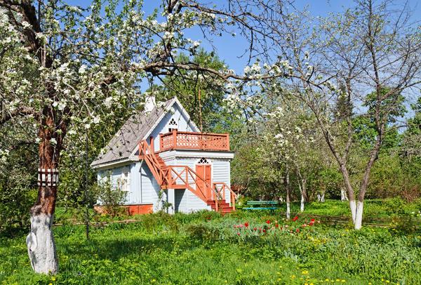 Сад без вредителей - это возможно!