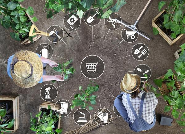 Подсчитываем расходы, связанные с огородничеством