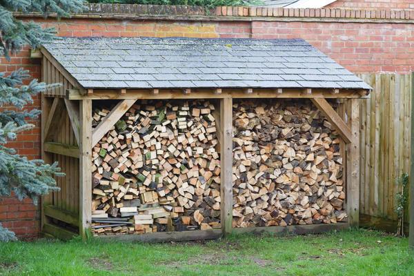 Мало запасти дрова - их еще нужно правильно хранить