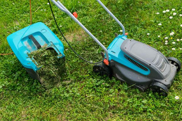 Травяная резка из газонокосилок - идеальная питающая мульча