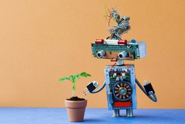 Сегодня вполне реально возложить заботу о своих растениях на умные машины