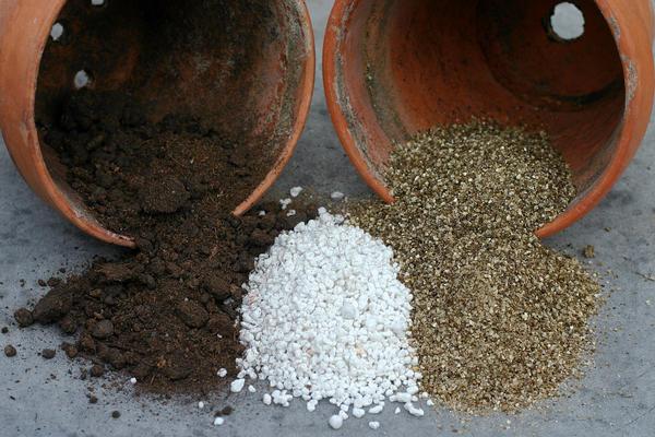Перлит как одна из составляющих почвосмеси для выращивания садовых и огородных культур