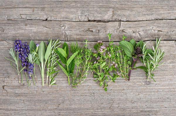 Подбирайте те лекарственные растения, которые вам подходят