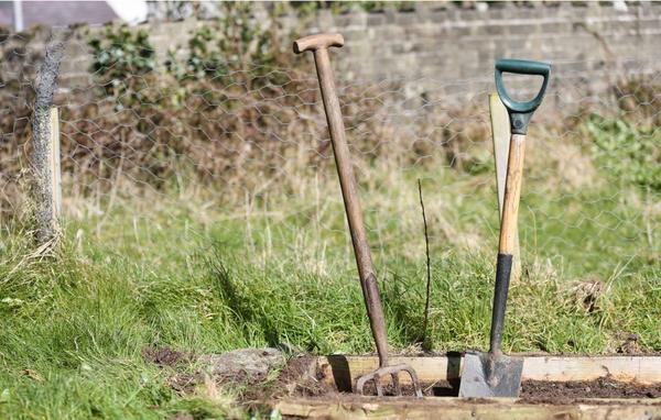Самый простой и быстрый способ улучшить почву на грядках